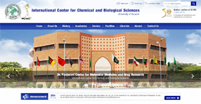 ICCBS - Karachi University Website By Interactive Media International