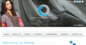 Naspol Enterprises Ltd. Website By Interactive Media International