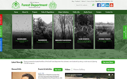 Sindh Forest Designed And Developed By Interactive Media