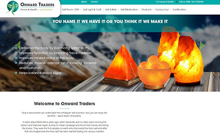 Onwards Traders Designed And Developed By Interactive Media